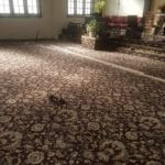 Carpet Restretching After